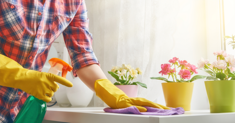 Mitos e verdades sobre a limpeza doméstica