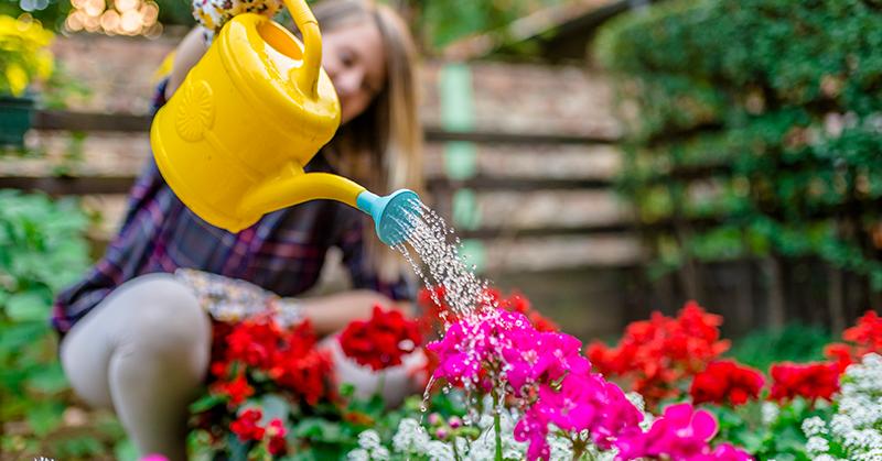 Como montar um jardim com flores do verão: conheça opções incríveis