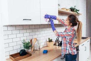 Conheça 4 dicas para afastar insetos da cozinha